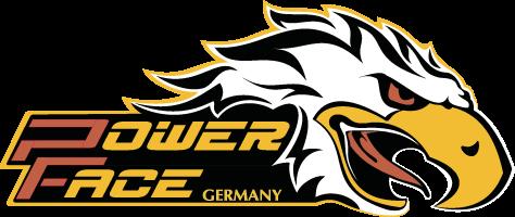 Powerface Holzknieschleifer